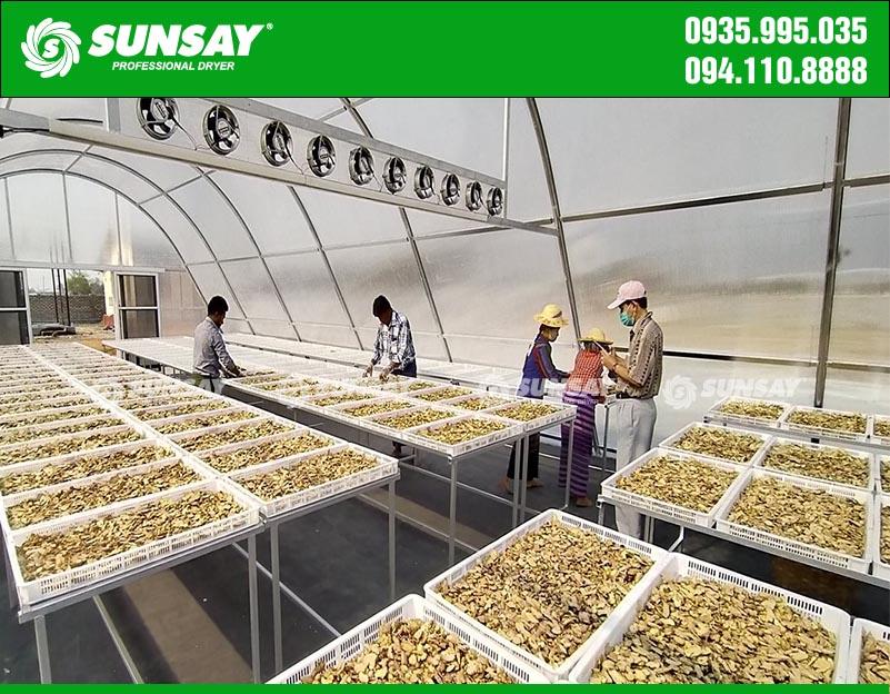 Nhà sấy năng lượng mặt trời sấy khô nông sản