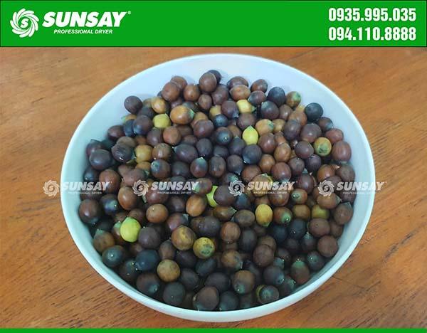 Hạt sen tươi được dùng làm nguyên liệu sấy thăng hoa